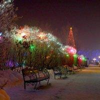 Холодно и пусто :: Александр Шихин