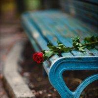 Только об одном можно в жизни жалеть – о том, что ты когда-то так и не рискнул... :: Алексей Латыш