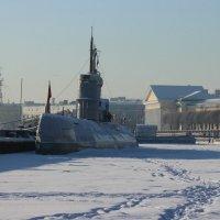 Прогулки по льду Невы :: Вера Моисеева