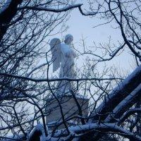 Еще один ангел над Питером :: larisa Киселёва
