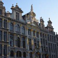 Бельгия :: Елена