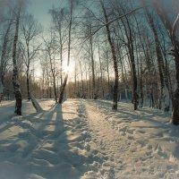 Зима.... :: Николай Шейкин