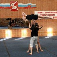 На акробатической орбите :: Валерий Чепкасов