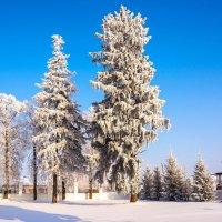 Зима :: Александр Тулупов