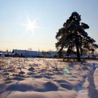 Мороз и солнце :: Катя Бокова
