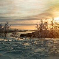 Морозное  январское :: Светлана