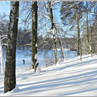 Зимний день! :: Татьяна