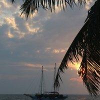 Пляж на закате :: Дмитрий Максимовский