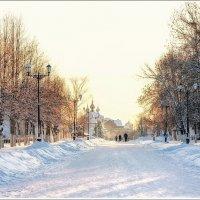 Морозный,солнечный денек... :: марк