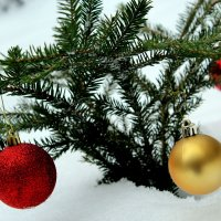 Новогоднее настроение :: Евгений Карелин