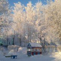 Январь :: Irina