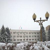 Зима в городе :: Елена Семигина