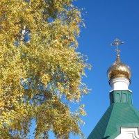 Купол часовни :: Сергей Махонин