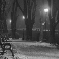 Ночная набережная :: Сергей Форос