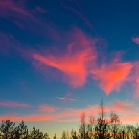 Облака как розовые фламинго :: Михаил Бояркин