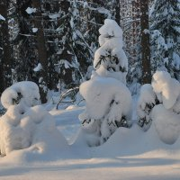 Зимняя сказка :: Валерий Толмачев