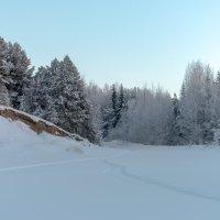 холодный январь :: Светлана