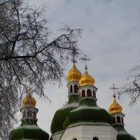 Январские купола ... :: Игорь Малахов
