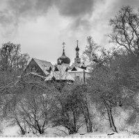 Чёрно-белый день. :: Edward J.Berelet