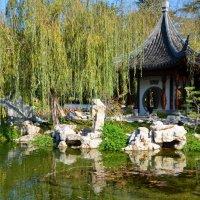 В японском саду :: Николай Танаев