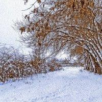 Снег :: Мария Богуславская