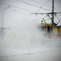 .. и выпал снег.... :: Александр Герасенков
