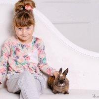 Два милых зайчика :: светлана шубенко
