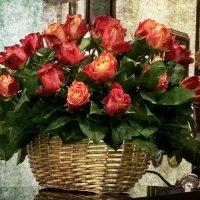 Розы :: Евгений Смольников