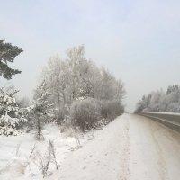 Заснеженная дорога :: Angelika Faustova