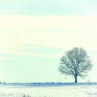 Одиночество :: Anna P