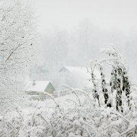 Снегопад :: Валерий Талашов