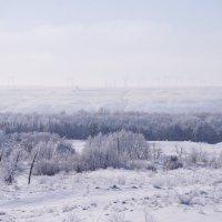 зима... :: татьяна