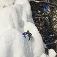 В объятиях зимы :: nika555nika Ирина