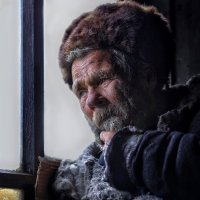 Мне бы зиму пережить :: Roman Mordashev