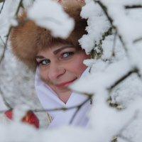 Зимняя боярыня :: Людмила Волдыкова