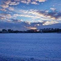 Калининград. Верхнее озеро. :: Murat Bukaev