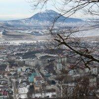 Гора Бык и город Железноводск :: Светлана Попова