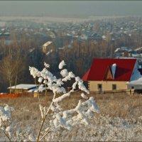 Дом окнами в поле :: Виктор Четошников
