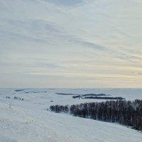 Зима  в Оренбуржье. Общий сырт. :: Elena Izotova