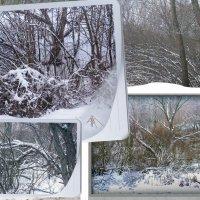 Зимняя зарисовка 2 :: Владимир Кроливец