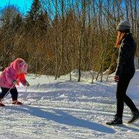 Первая лыжня :: Валентин Кузьмин