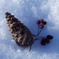 Зимний натюрморт :: Igor Arabadzhy