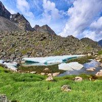 Лёд и поляна с горным луком :: Виктор Никитин