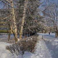 Зима в городе N :: Владимир Макаров