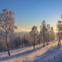 Сиреневый туман. :: Наталья Юрова