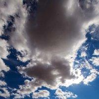 Пленённые небом :: Андрей Тыльчак