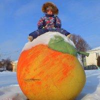 сидя на снегу на яблоке на снегу :: Александр Прокудин