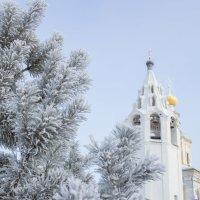 зима :: Светлана ~~~