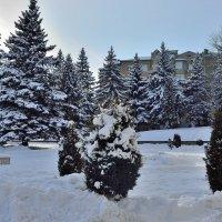 Снежная зима в Железноводске :: Мария Климова
