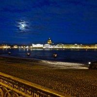 лунная ночь :: Елена